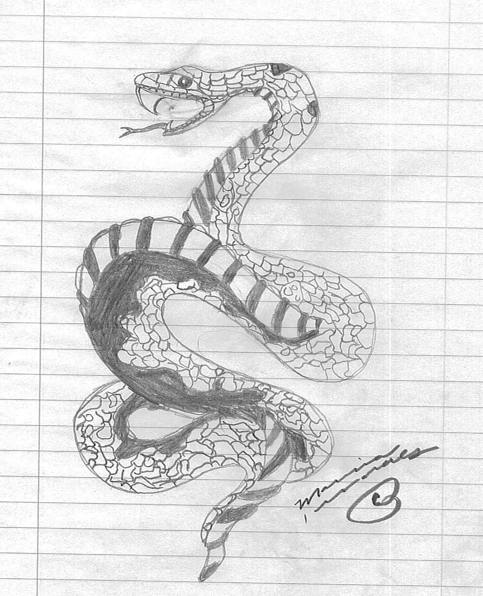 Drawn snake snake strike M3 on by marz Striking