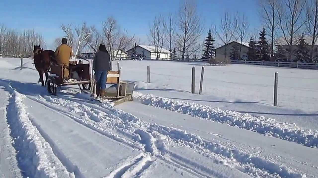 Drawn snow Horse YouTube drawn plow snow
