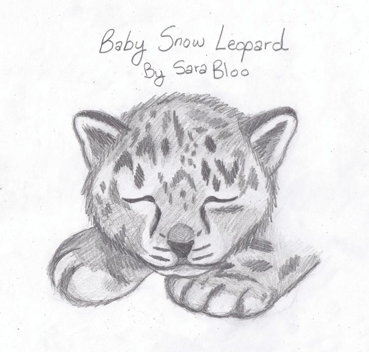 Drawn snow leopard baby WallpaperSafari DeviantArt Leopard iBlooCat by