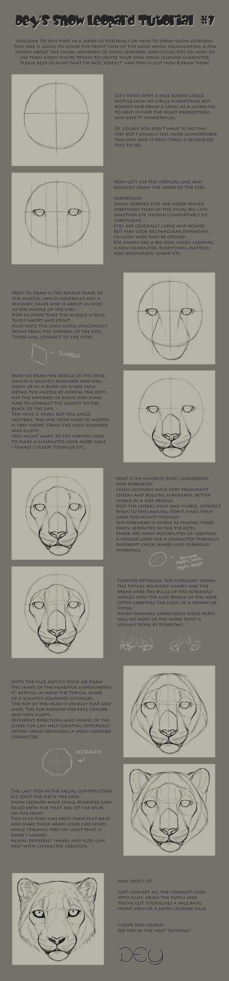 Drawn snow leopard deviantart Leopard DeyVarah by Head #1