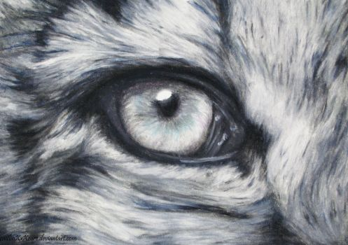 Drawn snow leopard eye 33 DeviantArt irelands Eye leopardeye