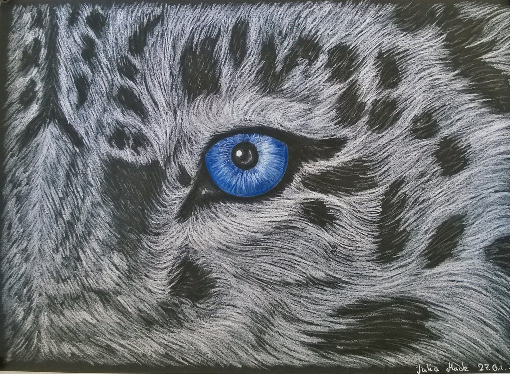 Drawn snow leopard eye By snow Nyjon eye leopard