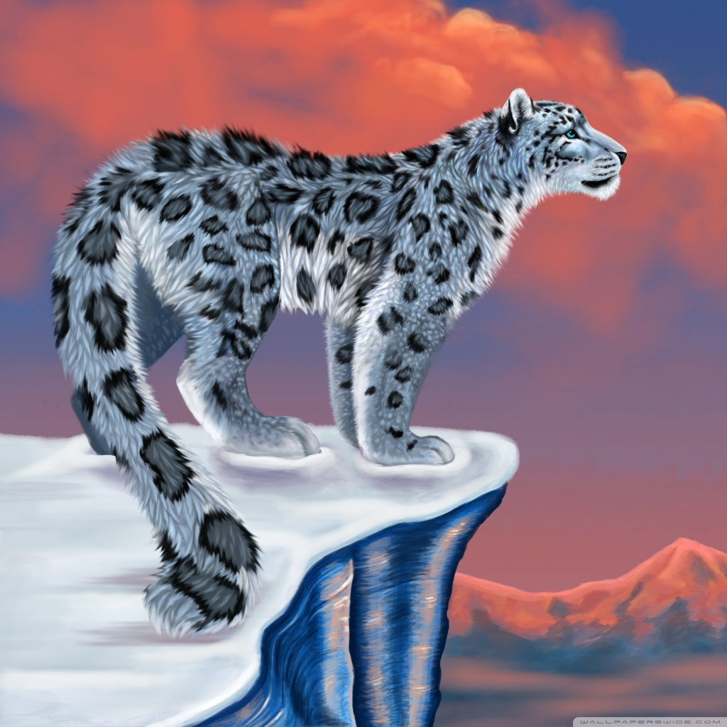 Drawn snow leopard funny : Fullscreen Leopard desktop HD