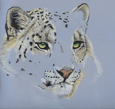 Drawn snow leopard fur His It Leopard will x