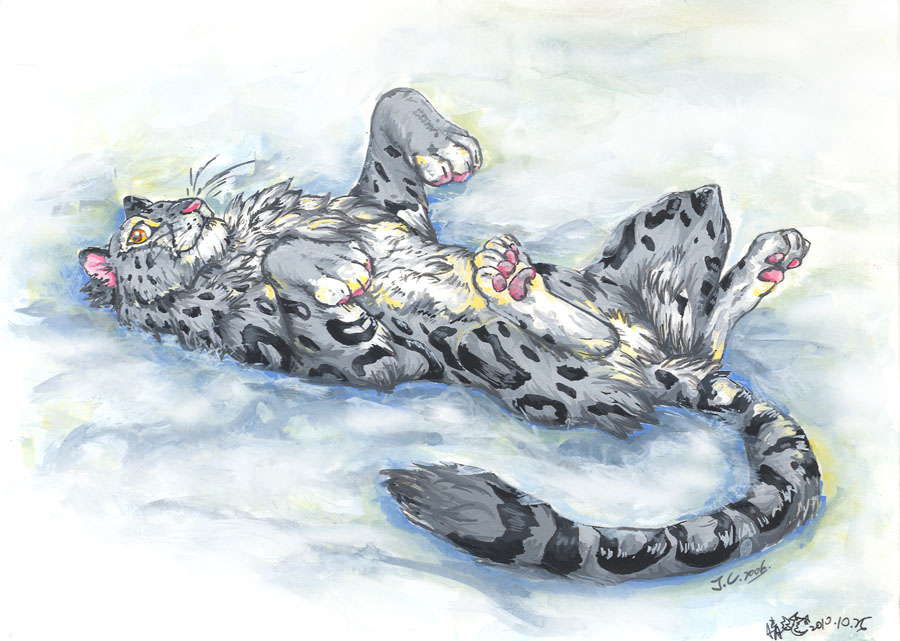Drawn snow leopard furry Snow on the the by