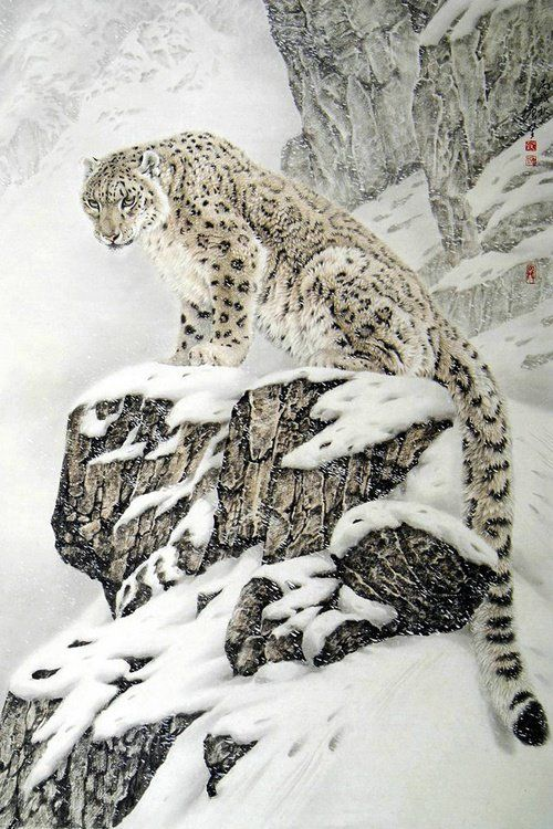 Drawn snow leopard ice Animals & & Leopard Pinterest