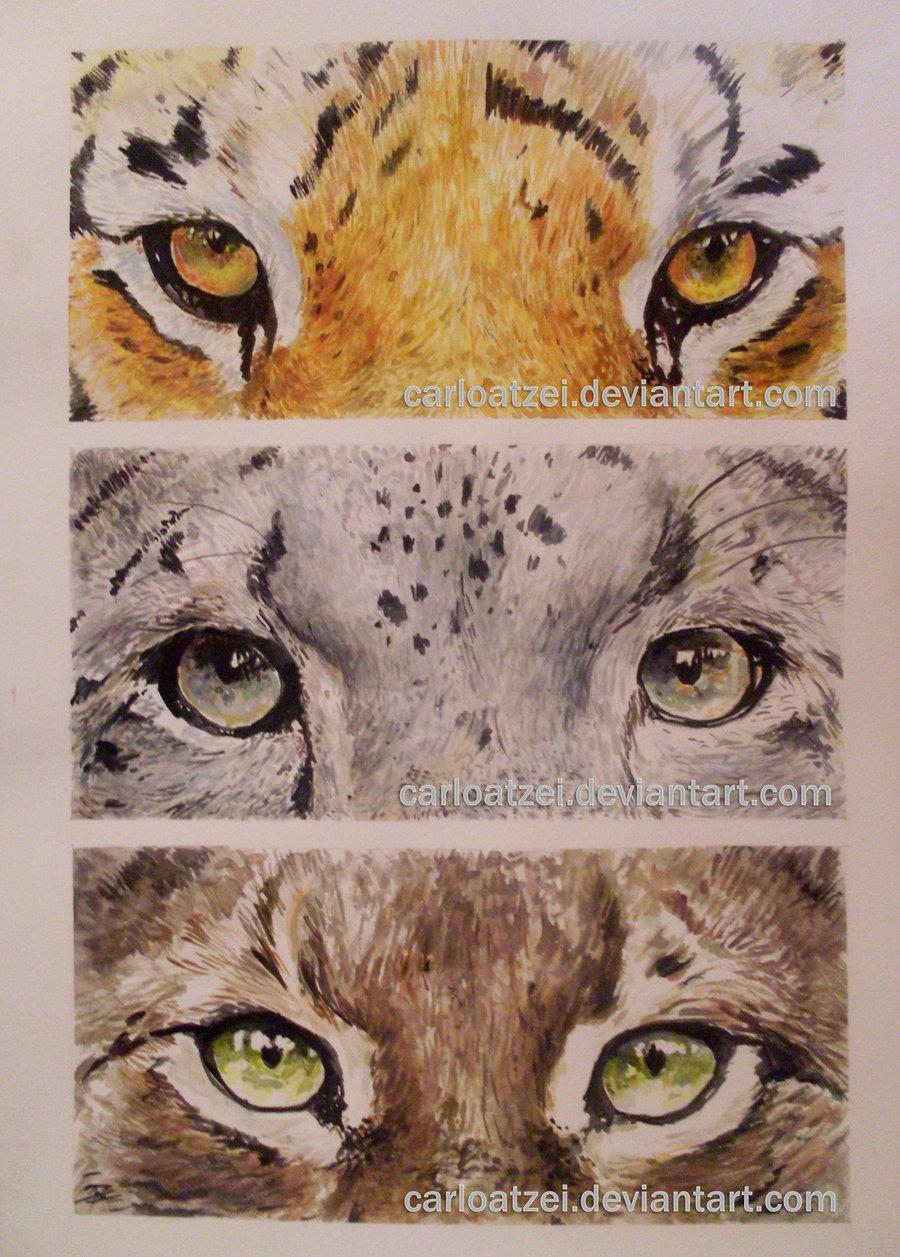 Drawn snow leopard lynx Snow Leopard Lynx on Eyes
