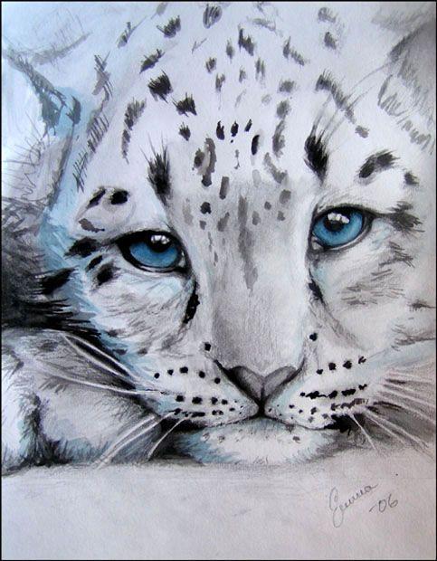 Drawn snow leopard lynx Pinterest ~makebelief on 20+ leopard