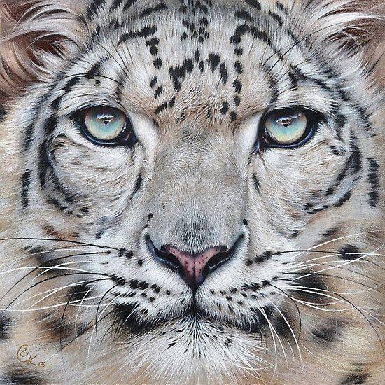 Drawn snow leopard snow tiger 548 best Faces images Kolotusha