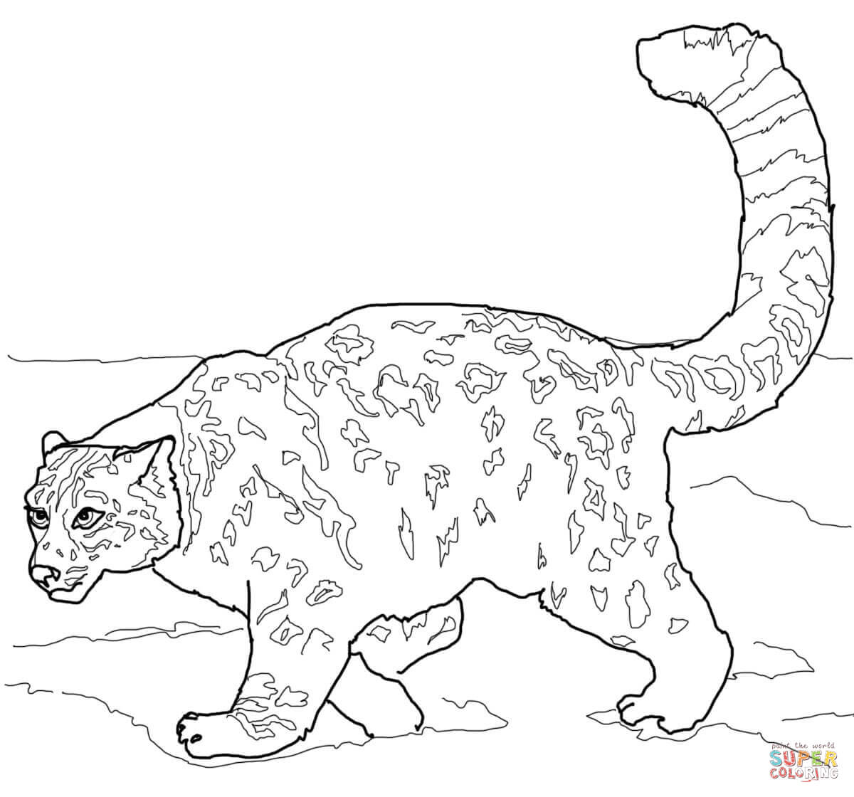 Drawn snow leopard tree drawing Pages Leopard Leopards pages Coloring