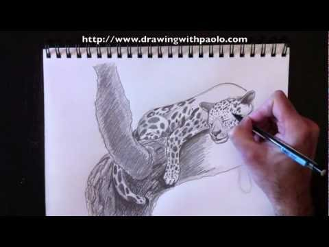 Drawn snow leopard tree drawing YouTube a Leopard Morrone a