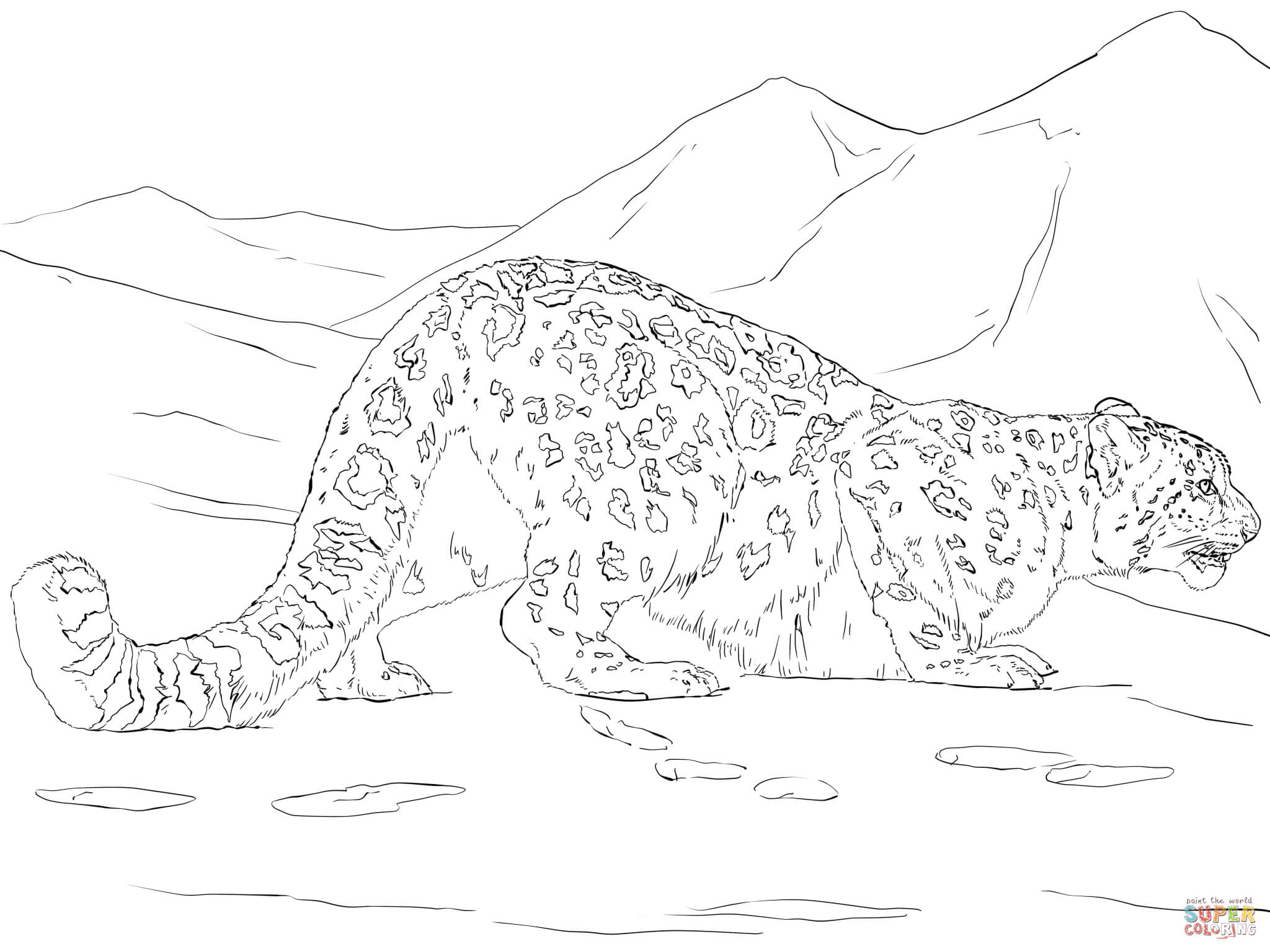 Drawn snow leopard tree drawing Coloring page Printable Snow Leopard