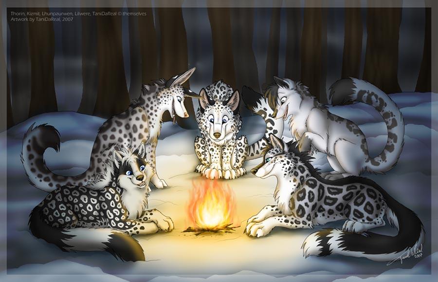 Drawn snow leopard wolf Jpg snowwolfmeeting VCL TaniDaReal