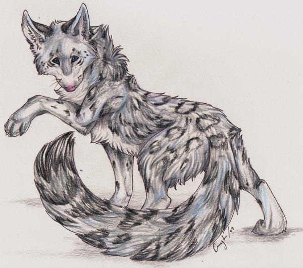 Drawn snow leopard wolf DeviantArt Soul by Soul Bliss