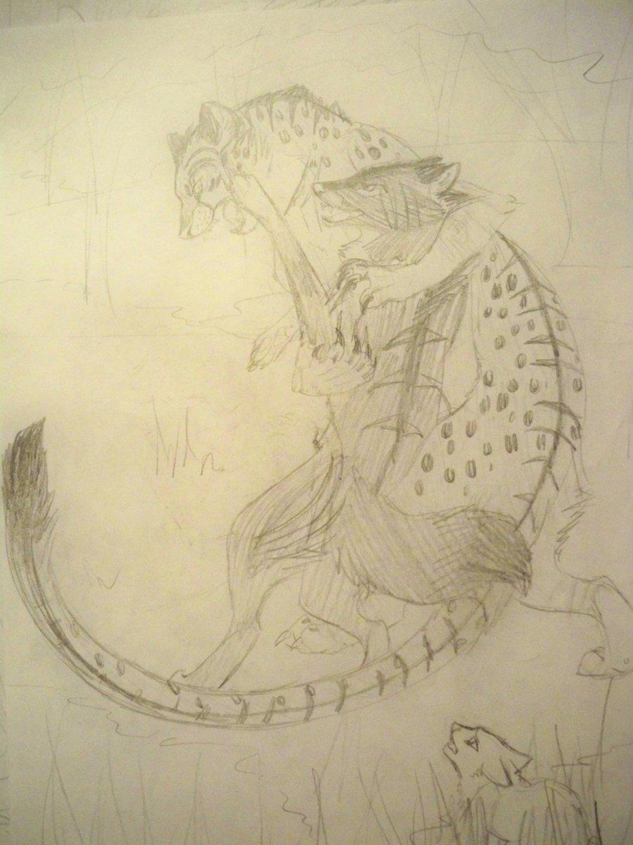 Drawn snow leopard wolf MissDawnShadow DeviantArt vs leopard Wolf