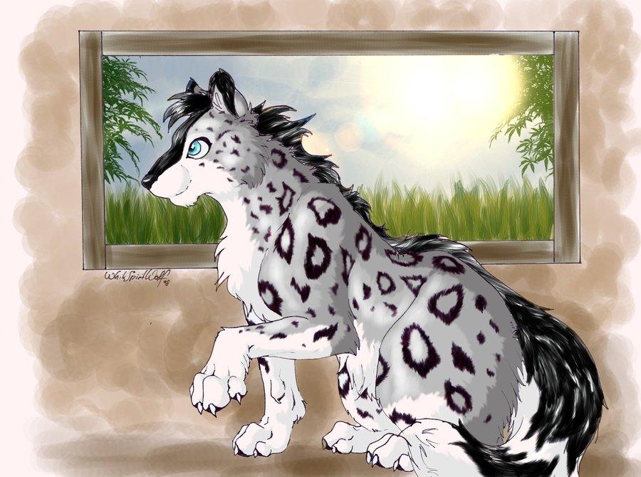 Drawn snow leopard wolf Snow Leopard DeviantArt Snow by