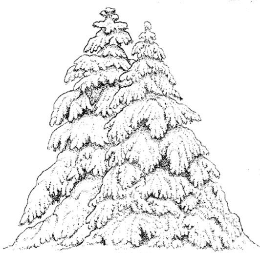 Drawn snow snowy tree Stamps 50 winter Pinterest really