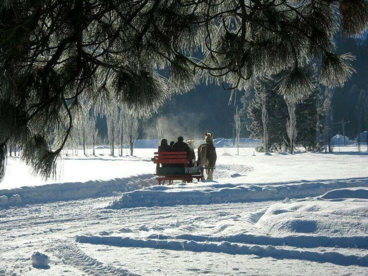 Drawn snow walpaper Drawn best sleigh snow sleigh