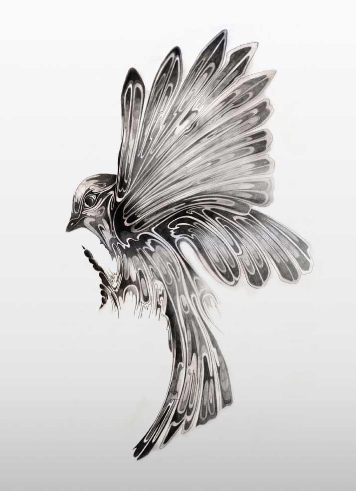 Drawn sparrow Daily Si – Art Si