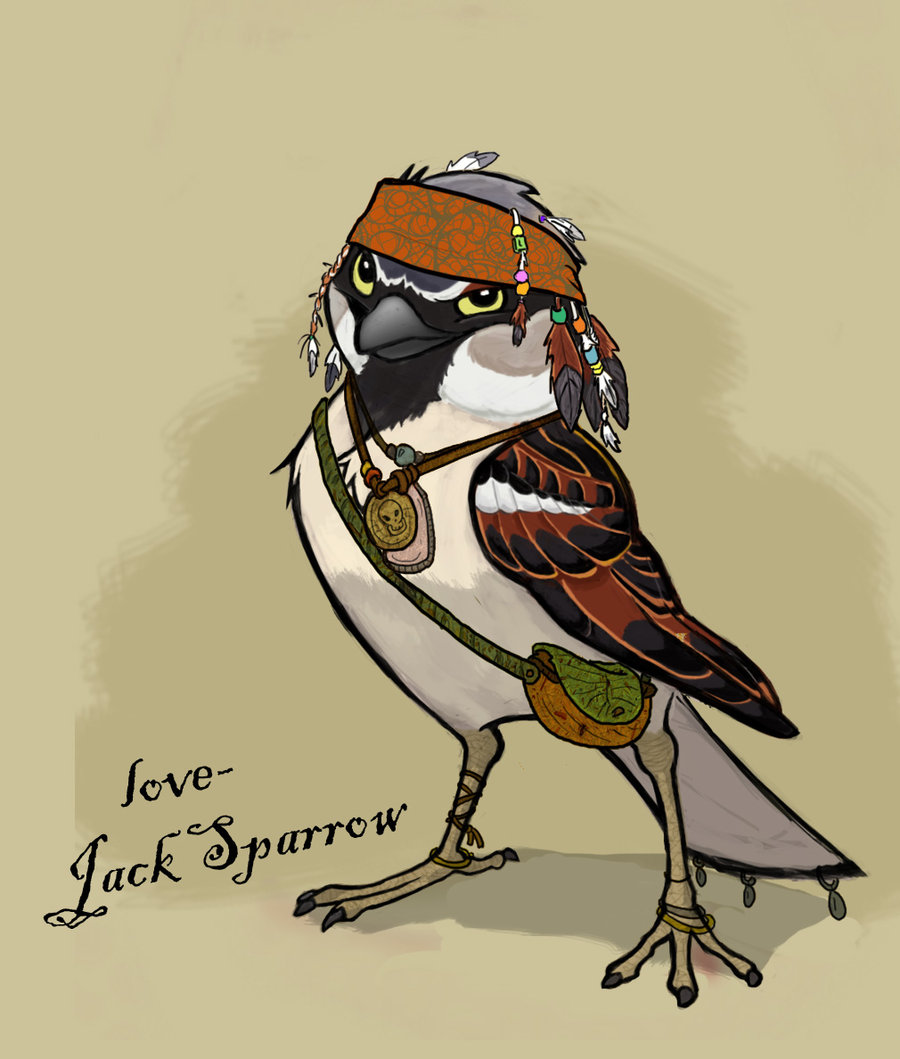 Drawn sparrow animated Sparrow and Jack Dreamworks Megamind: