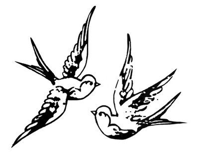 Drawn swallow The a a swallow on