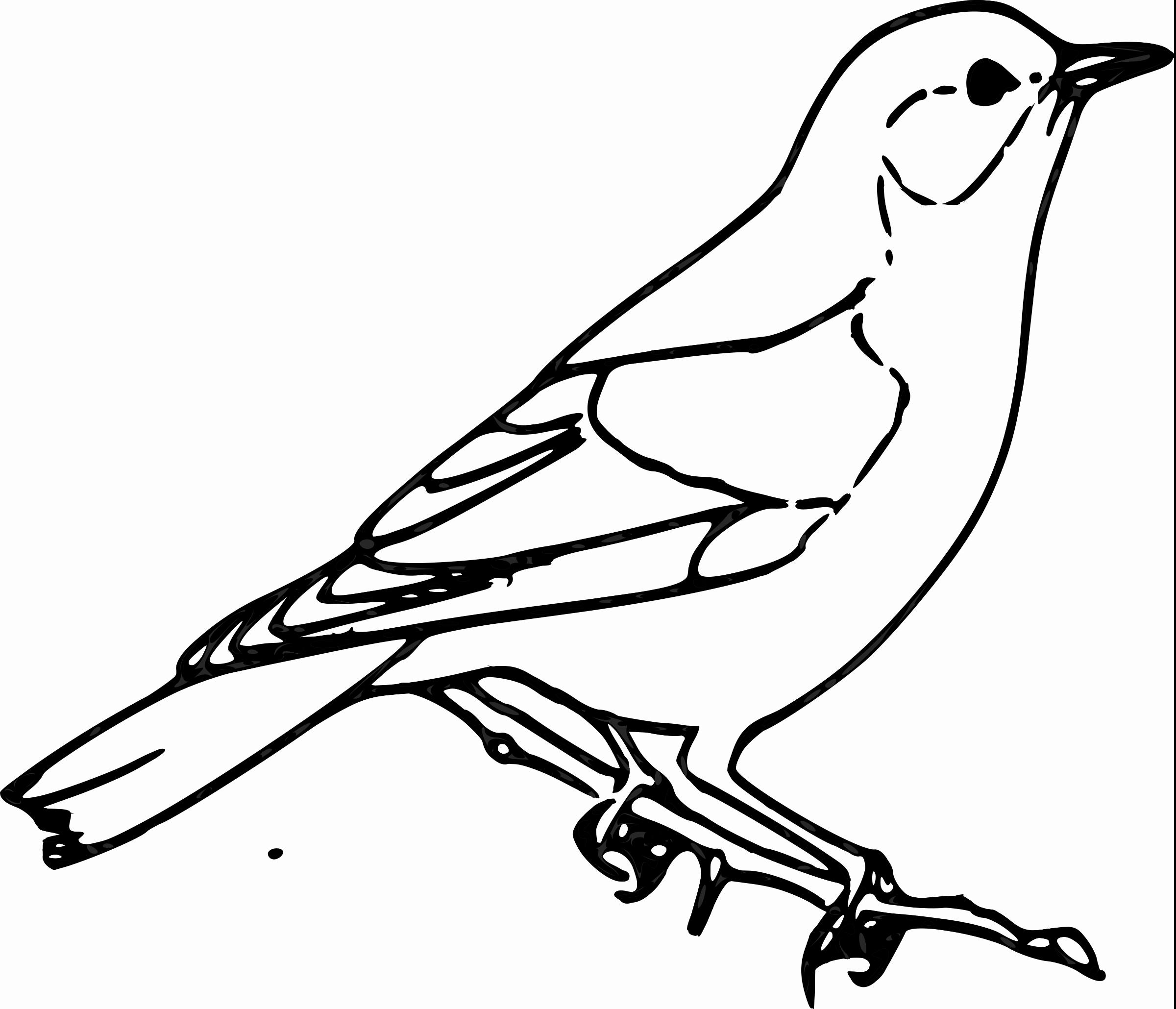 Black clipart sparrow Clipart Sparrow Sparrow