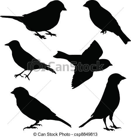 Black clipart sparrow Stock Sparrow images Set
