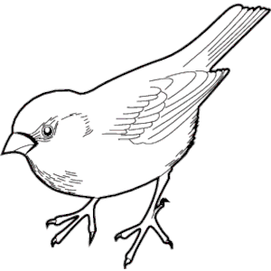 Black clipart sparrow – Clip Clip Clipart Art
