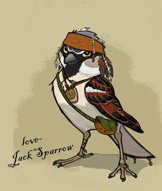 Drawn sparrow love Yahoo jack Jack Image