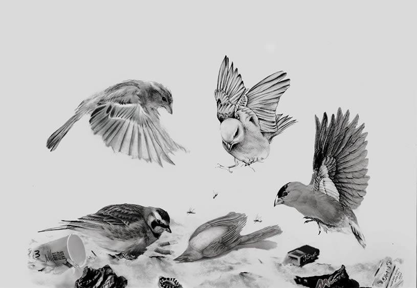 Drawn brds perched bird Singh Artist Jatinder Art Magazine