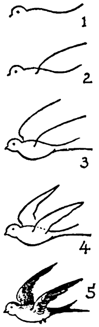 Drawn sparrow simple How Technorati Swallows to Drawing