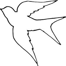 Drawn sparrow simple Sparrow simple Search outline simple