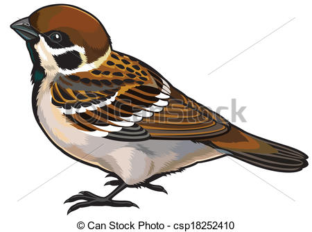 Bird clipart side view Clip Vector bird side of