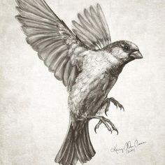Drawn sparrow tree spirit Featuring… en new by #artwork