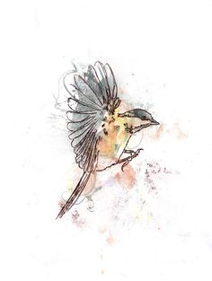 Drawn sparrow tree spirit The sparrow home for and