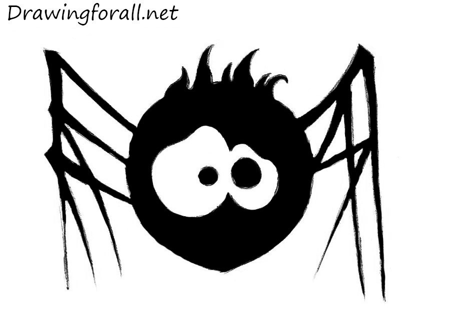 Drawn spider For net  to to