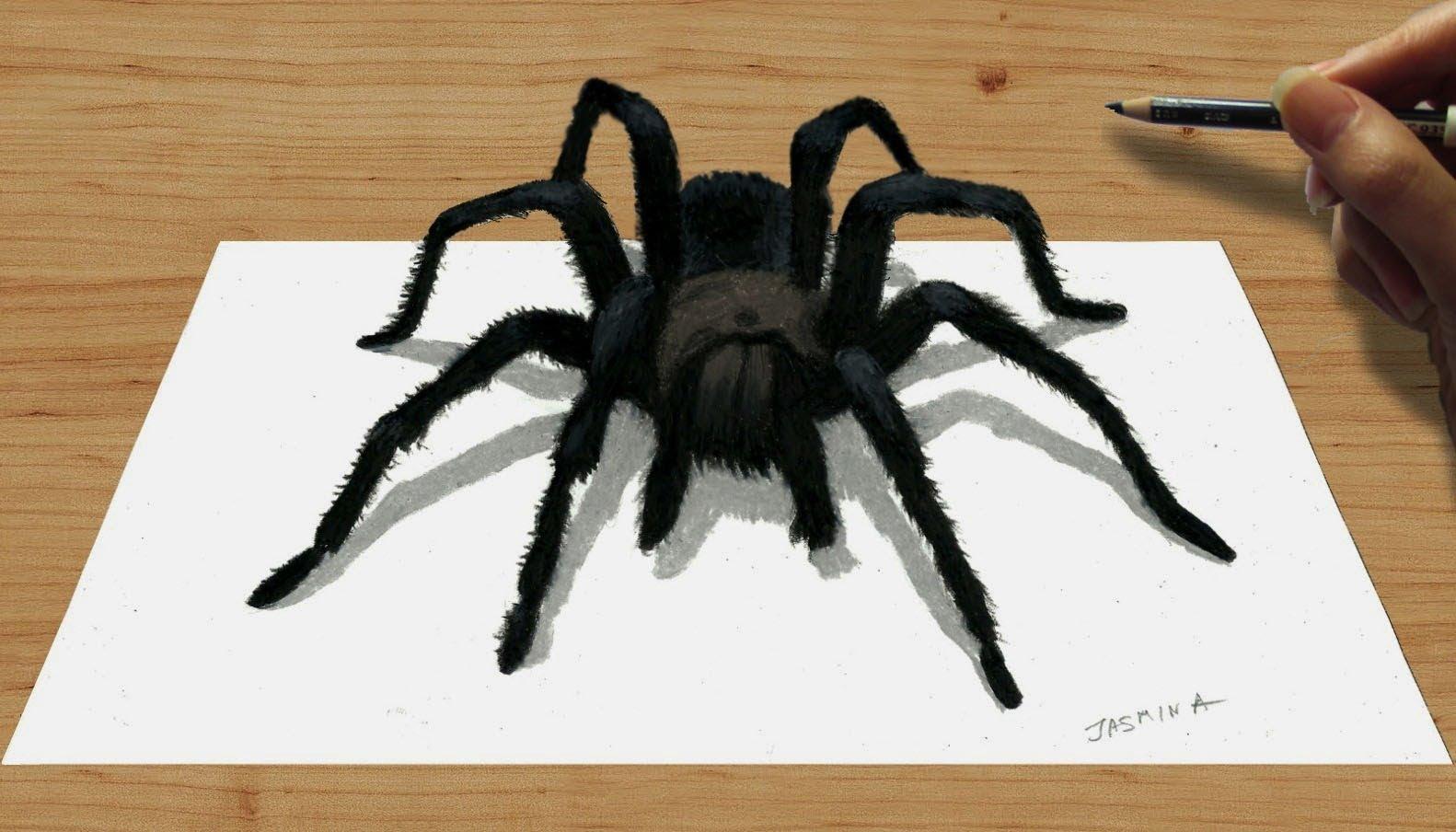 Drawn spider 3d art #9