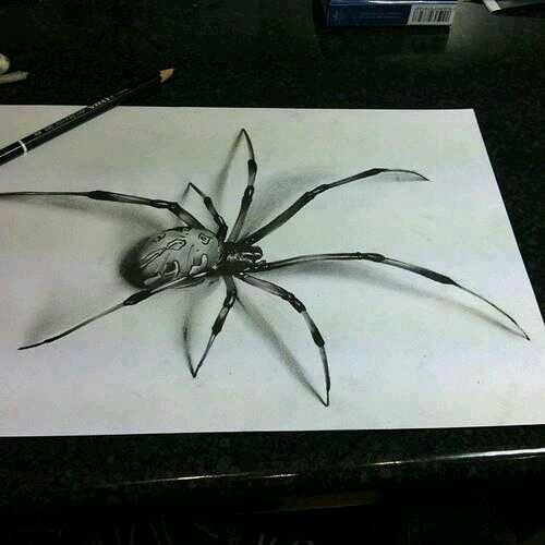 Drawn spider 3d art #10