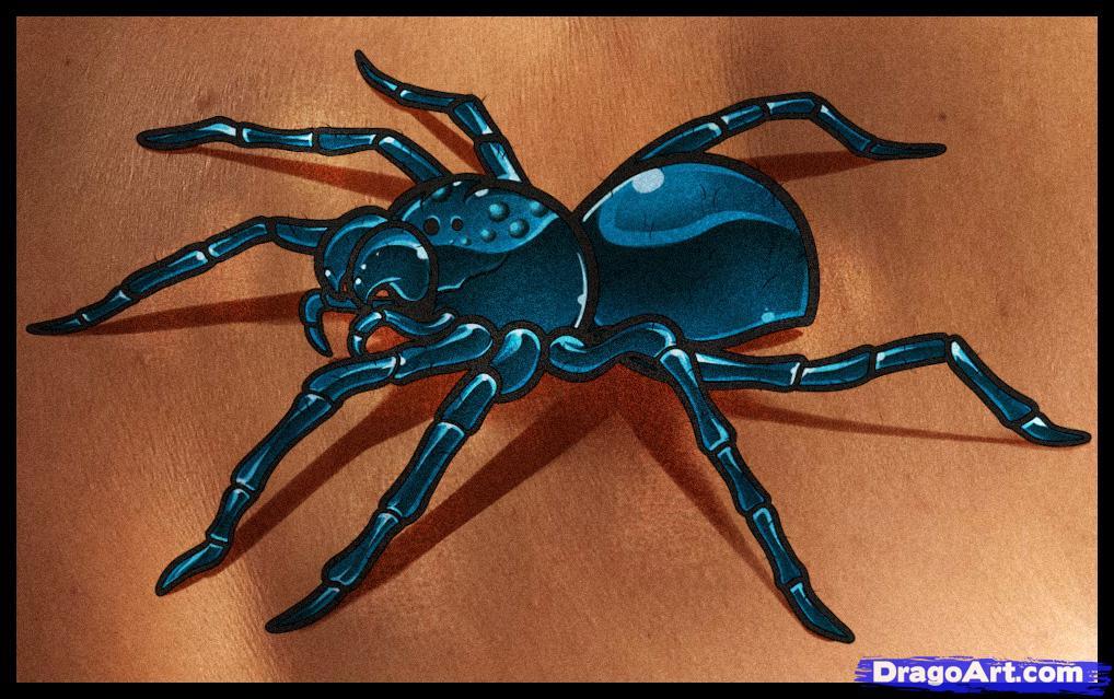 Drawn spider 3d design Tattoo tattoo to spider a