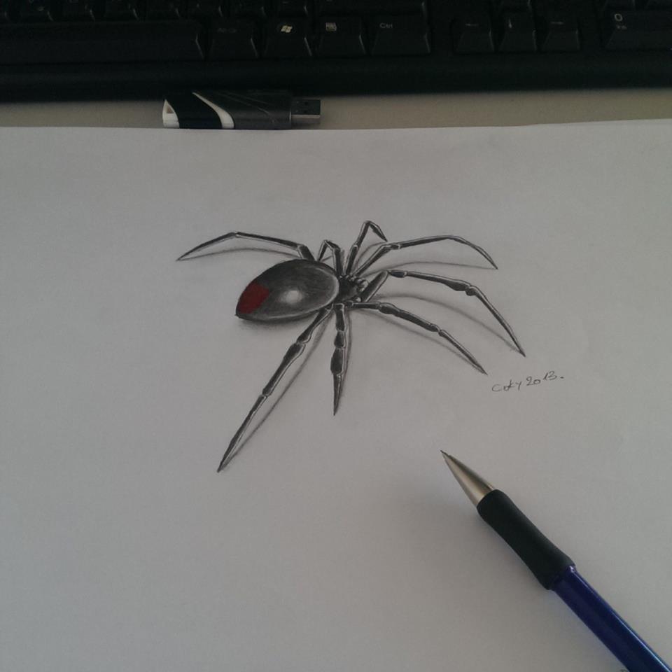 Drawn spider 3d design Drawings Tattoo Spider Widow Black
