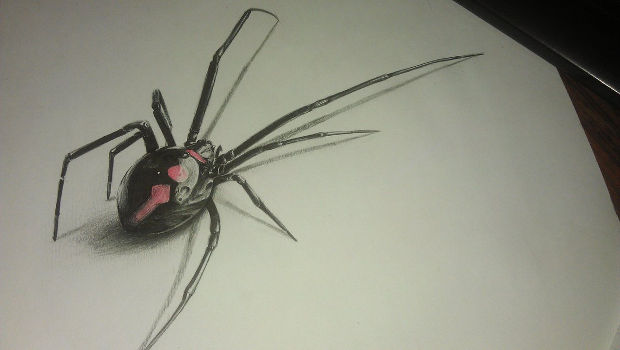 Drawn spider 3d design Vector Drawings Design 25+ Drawing