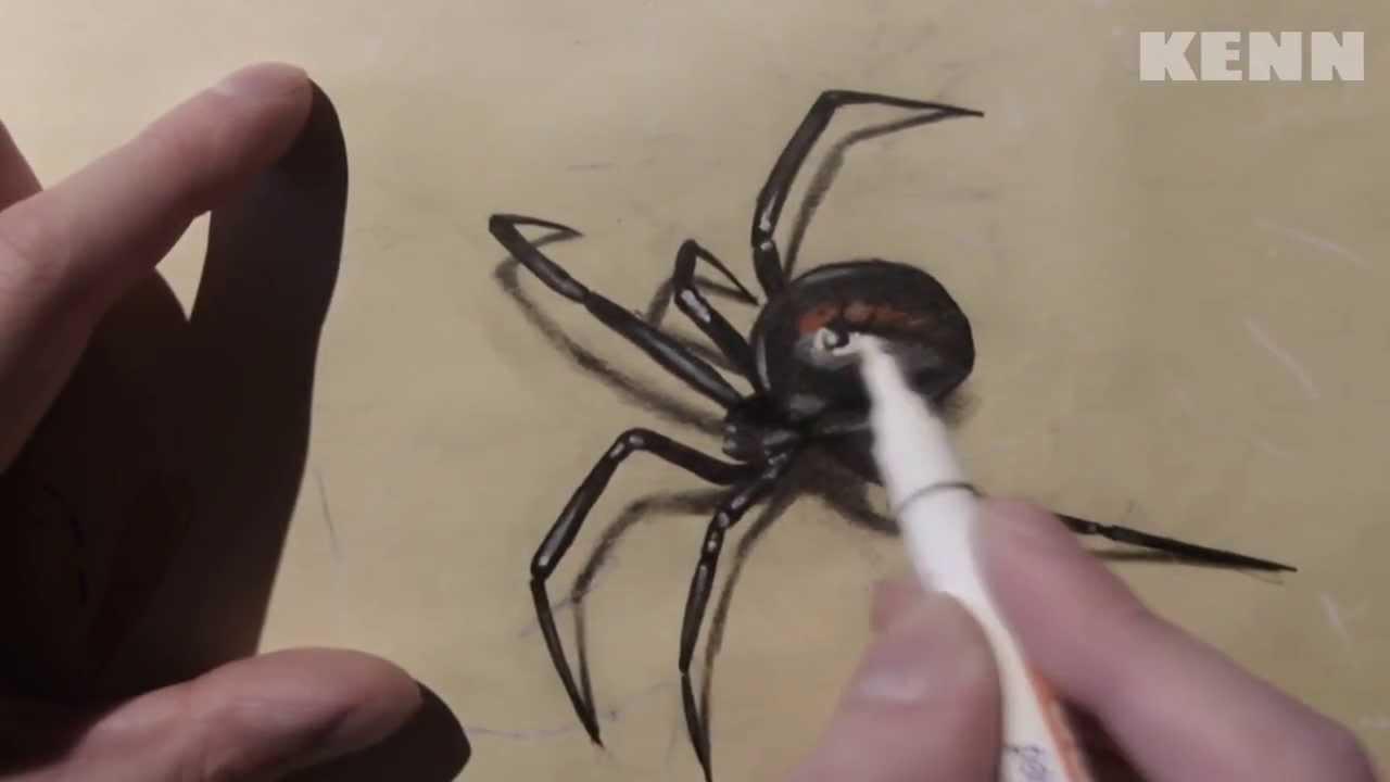 Drawn spider 3d design YouTube DRAWING WIDOW  BLACK