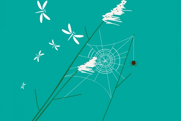 Drawn spider aqua Background handdrawn insects Wild icons