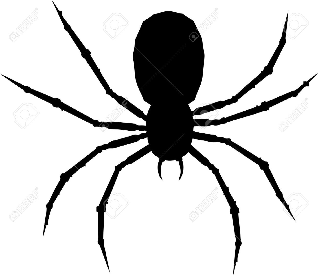 Drawn spider arachnid #5