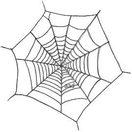 Drawn spider basic Effective A could projected onto