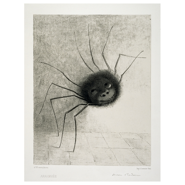 Drawn spider charcoal #1