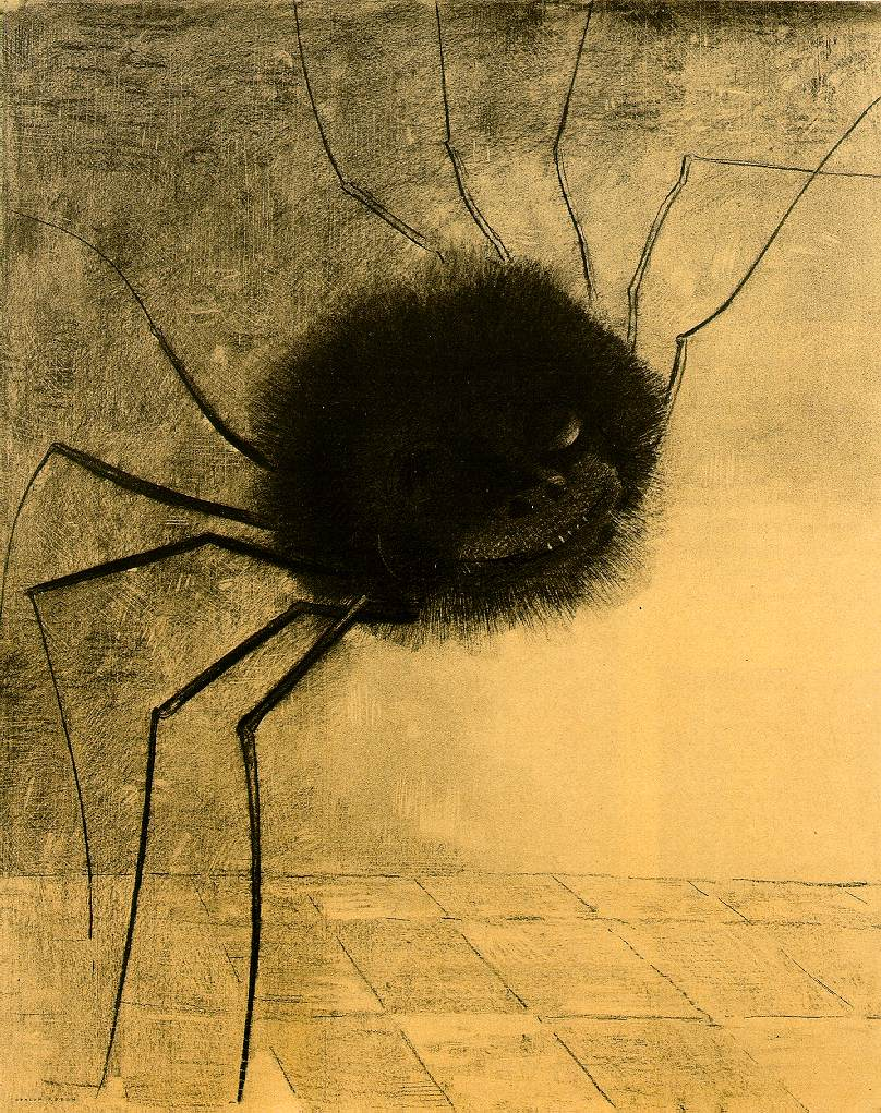 Drawn spider charcoal #8