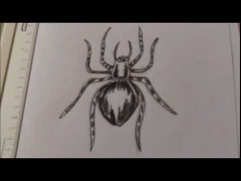 Drawn spider creepy spider A YouTube To Spider Tattoo
