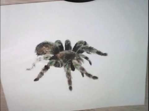 Drawn spider creepy spider #10