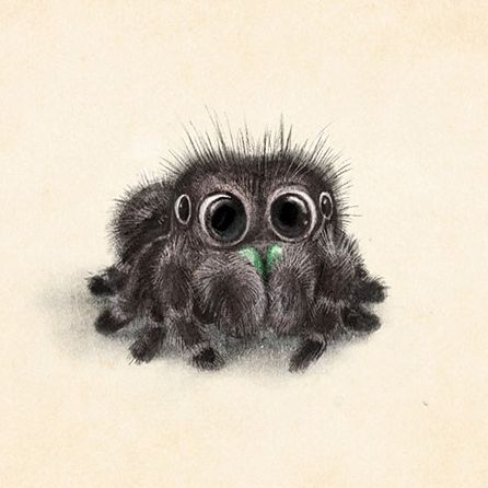 Drawn spider cute anime 20+ Best ideas drawing Pinterest